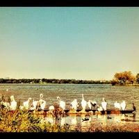 Foto scattata a White Rock Lake Park da Fiana il 10/14/2012
