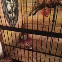 Снимок сделан в реальные квесты выберись из комнаты пользователем Юрец Огурец 4/5/2015