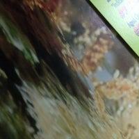 11/24/2013 tarihinde Elizabeth R.ziyaretçi tarafından Go Greek Boca Store'de çekilen fotoğraf