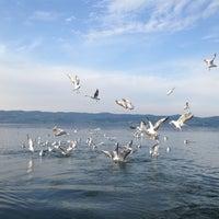 3/24/2013 tarihinde Bahar T.ziyaretçi tarafından Sapanca Sahili'de çekilen fotoğraf