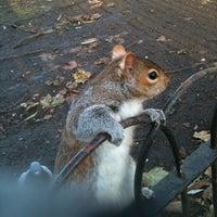 12/11/2012에 Alessandro C.님이 St James's Park에서 찍은 사진
