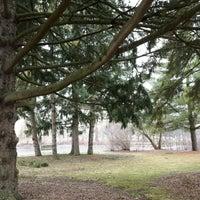 3/26/2017にRaymond C.がRiverside Parkで撮った写真