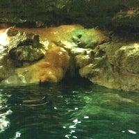 รูปภาพถ่ายที่ Cenote San Ignacio โดย Miguel Angel S. เมื่อ 3/29/2013
