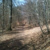 Foto diambil di Lampennester Wald oleh Frank R. pada 4/14/2013