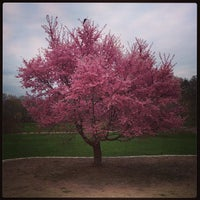 4/18/2013 tarihinde Melissa L.ziyaretçi tarafından Arnold Arboretum'de çekilen fotoğraf