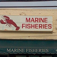 Marine Fisheries Fish Market