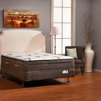 Excellent Denver Mattress Company Mishawaka In Home Interior And Landscaping Synyenasavecom