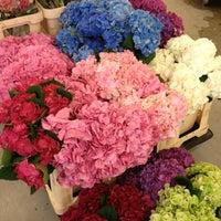 Оптовые базы центры цветов спб — 5
