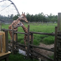 7/9/2013에 Devon G.님이 Wild Adventures Theme Park에서 찍은 사진
