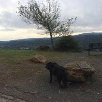 Orinda oaks park