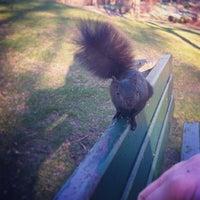 Снимок сделан в High Park пользователем Angie T. 5/11/2014