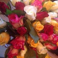 Снимок сделан в Flora2000.ru пользователем Tatyana S. 6/4/2014