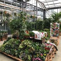 Migros Do It Garden Carouge Geneve