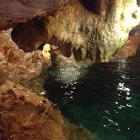 รูปภาพถ่ายที่ Cenote San Ignacio โดย Lily T. เมื่อ 5/5/2013