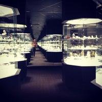 2/20/2013 tarihinde Matt B.ziyaretçi tarafından Carnegie Museum Of Natural History'de çekilen fotoğraf