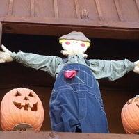 valas pumpkin patch website