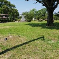 公園 蓮池