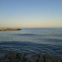 Photo prise au Playa del parque natural de la desembocadura del Guadalhorce par Anabel le6/1/2013