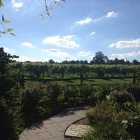 7/29/2013にPamela Y.がCrossing Vineyards and Wineryで撮った写真