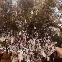 Das Foto wurde bei Yörük Parkı von Berfin Y. am 7/13/2019 aufgenommen