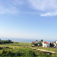 5/26/2014 tarihinde Tarık K.ziyaretçi tarafından Karaburun Sahili'de çekilen fotoğraf