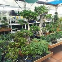 Bardin Garden Center 3 Tips From 178 Visitors