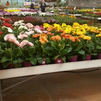 Bardin Garden Center 3 Tips From 178 Visitors