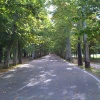 Foto tomada en Casa de Campo por Tereza K. el 10/12/2012