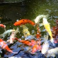 Menu Tokyo Garden 7 Tips From 189 Visitors