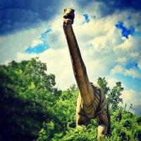 6/29/2013にMichael D.がField Station: Dinosaursで撮った写真