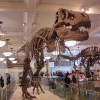 Foto scattata a American Museum of Natural History da Pavel K. il 8/20/2013
