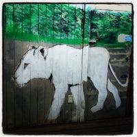 8/6/2013에 Melissa M.님이 The Lion's Eye Tavern에서 찍은 사진