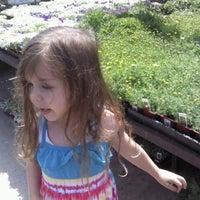 4/7/2013에 Rita님이 Armstrong Garden Centers에서 찍은 사진
