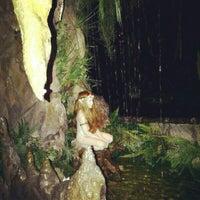 6/24/2013에 Jennifer님이 El Bosc de les Fades에서 찍은 사진