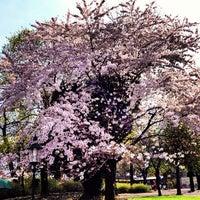 Das Foto wurde bei Stadtpark von Patrick S. am 4/18/2013 aufgenommen