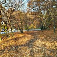 Park Zelengaj Gornji Grad Medvescak 164 Visitors