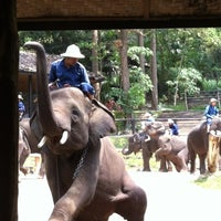 Foto scattata a Maesa Elephant Camp da thani a. il 4/27/2012