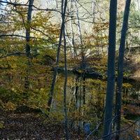 Foto scattata a Wissahickon Creek Trail da Brian R. il 11/13/2016