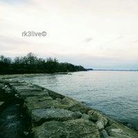 1/13/2017にRakeshがPort Union Waterfront Parkで撮った写真