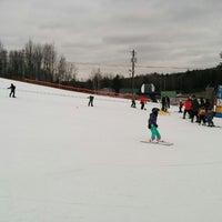 Ski Martock - Ski Area