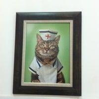 7/28/2013 tarihinde Resat N.ziyaretçi tarafından Petlantis Veteriner Kliniği'de çekilen fotoğraf