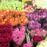 Гортензия оптовый магазин цветов на здолбуновской доставка