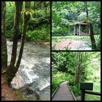 Снимок сделан в Forest Park - Wildwood Trail пользователем Michele S. 5/25/2013