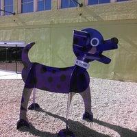 Photo taken at Children's Museum of Phoenix by Liz B. on 1/20/2014