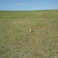 Roberts Prairie Dog Town 1 Tip