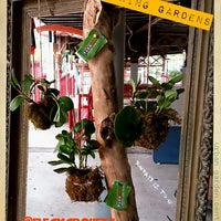 Das Foto wurde bei Urban Garden Center von Dimitri am 9/1/2013 aufgenommen
