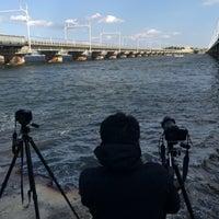 11/4/2017にだだんだんが東海道新幹線 第三浜名橋梁で撮った写真