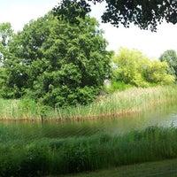 7/13/2013 tarihinde Stephan G.ziyaretçi tarafından Britzer Garten'de çekilen fotoğraf