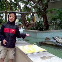 Foto tomada en Hyatt Centric Key West Resort & Spa por Yvonnie A. el 11/20/2012