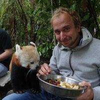 4/18/2013 tarihinde Allan H.ziyaretçi tarafından Wellington Zoo'de çekilen fotoğraf